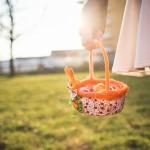Chasse aux œufs au parc de Diane ! (lun 17 avril)